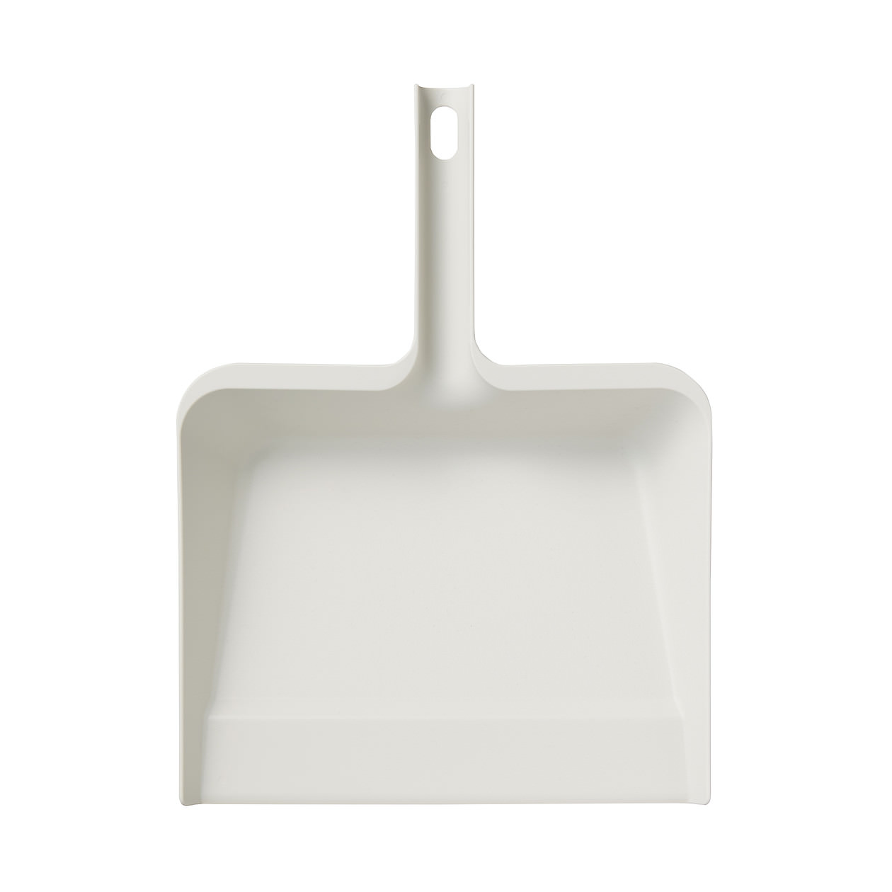Cleaning System - Dustpan
